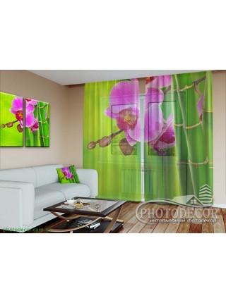 """3D ФотоШторы """"Малиновая орхидея и бамбук"""""""