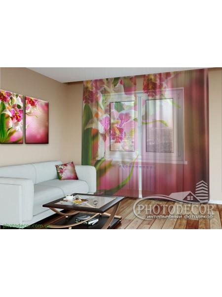 """3D ФотоТюль """"Пестрые орхидеи"""""""