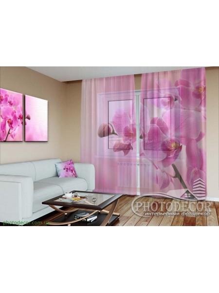 """3D ФотоТюль """"Ветка розовой орхидеи"""""""