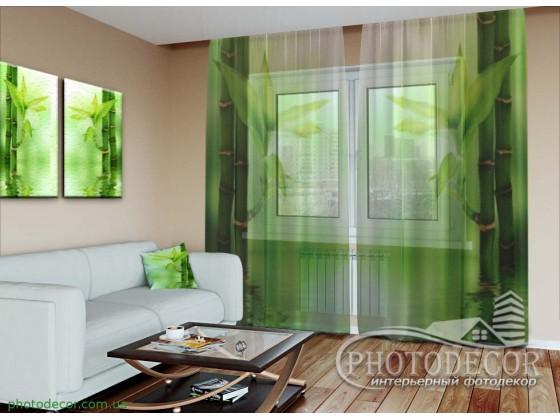 """3D ФотоТюль """"Зеленый бамбук"""""""