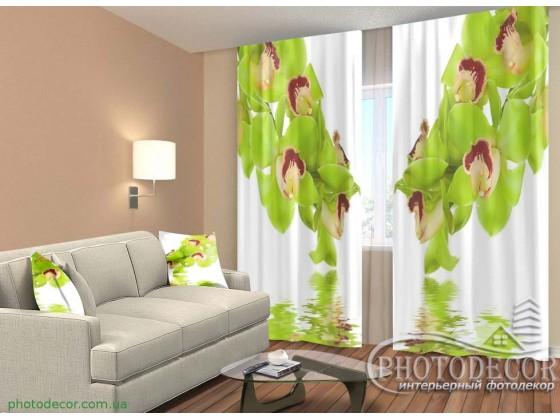 """3D ФотоШторы """"Орхидея на белом фоне"""""""