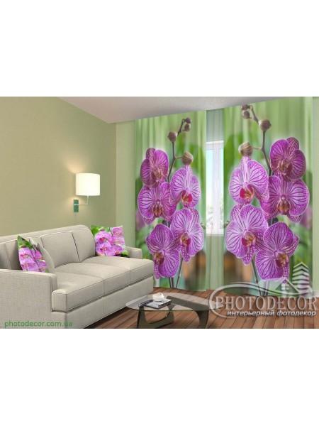 """3D ФотоШторы """"Малиновые орхидеи на зеленом фоне"""""""