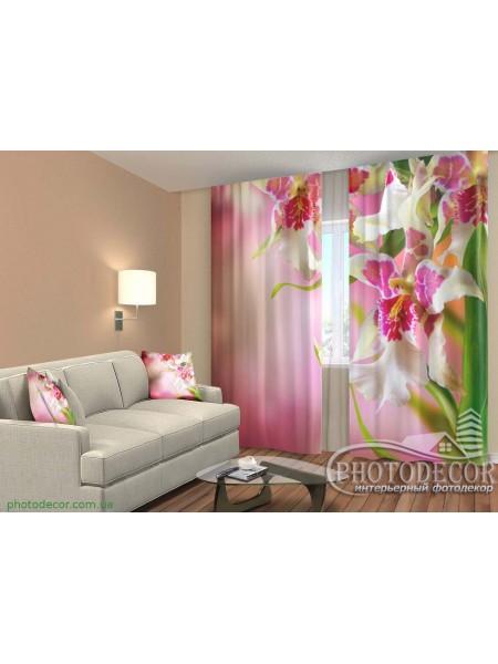 """3D ФотоШторы """"Пестрые орхидеи"""""""