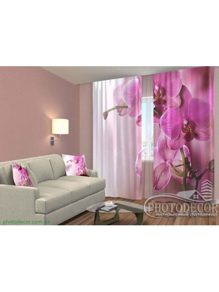 "3D ФотоШторы ""Пурпурная орхидея"""