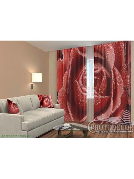 """3D ФотоШторы """"Роса на алой розе"""""""