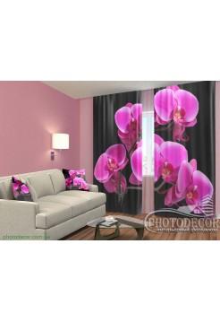 """3D ФотоШторы """"Ветка орхидеи"""""""