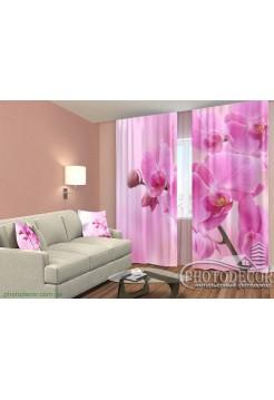 """3D ФотоШторы """"Ветка розовой орхидеи"""""""