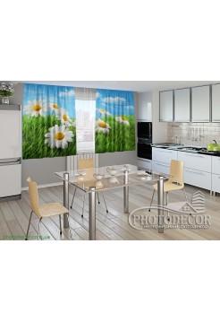 """Фото шторы для кухни """"Ромашки в травке"""""""