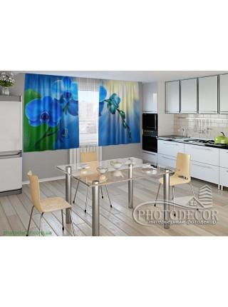 """3D ФотоШторы """"Голубая орхидея"""""""