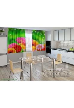 """Фото шторы для кухни """"Красивые герберы"""""""