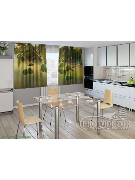 """Фото шторы для кухни """"Ветка оливок"""""""